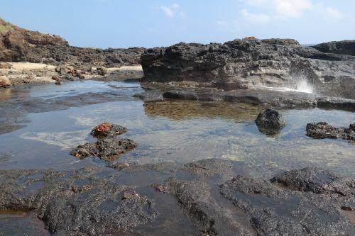 tide pool ocean hawaii