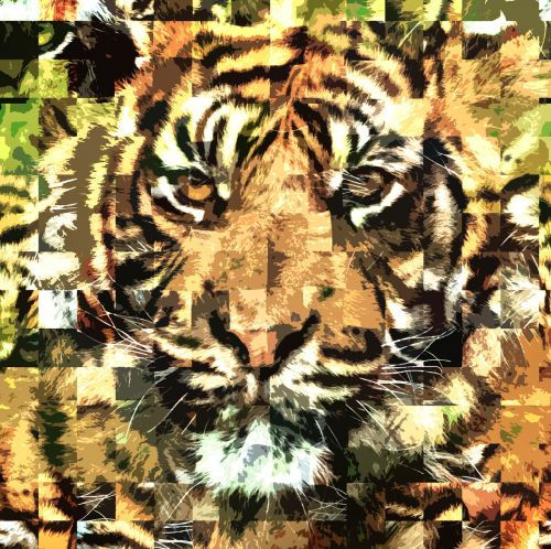 tiger zoo abstract
