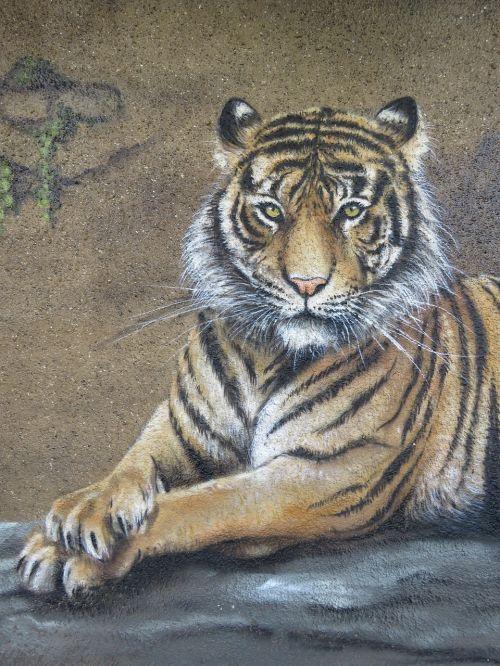 tiger wall art wall