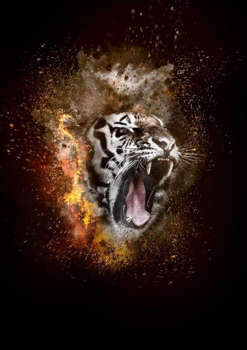 tiger fire smoke
