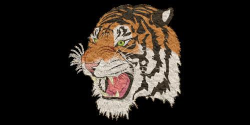 tiger tiger png lion