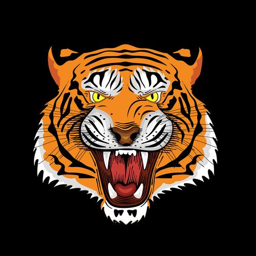 tiger  royal bengal tiger  tiger face