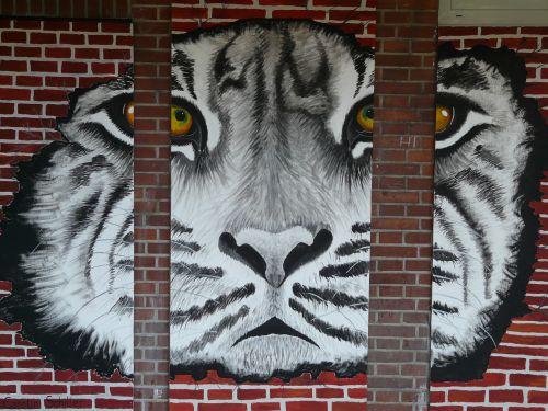 tiger art painting