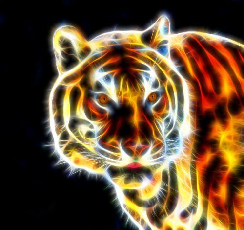 tigras & nbsp, fraktinis & nbsp, laidas & nbsp, liepsna, viela & nbsp, liepsna, fraktiniai & nbsp, laidai, laidai, fraktas & nbsp, menas, tigras, bengalų & nbsp, tigras, laukinis & nbsp, gyvūnas, gamta, laukinis & nbsp, tigras, tigras & nbsp, laukinis, padaras, shootsalot, tigro fraktalo vielos liepsna