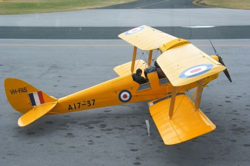 tiger moth biplane vintage