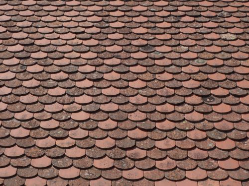 tile house roof brick