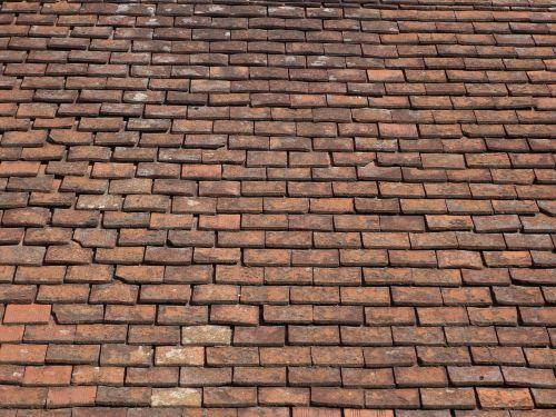 tile shingle roof
