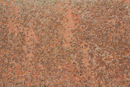 tiled roof  tile  roof