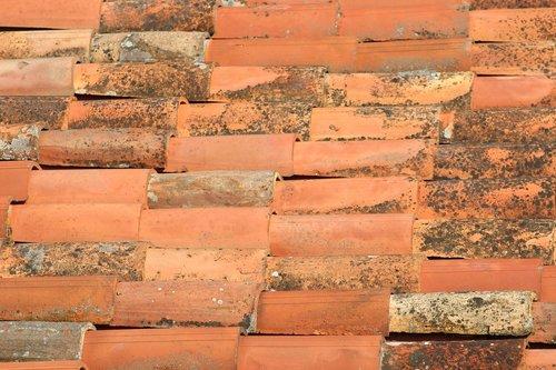 tiles  terracotta  house