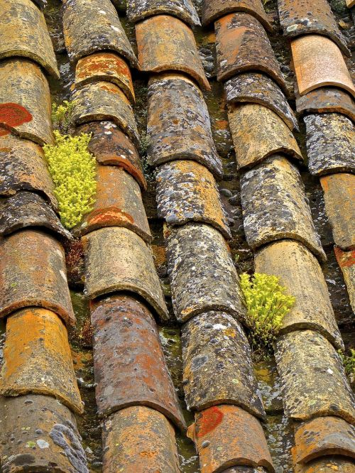 tiles roof cover