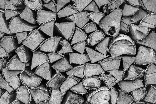 mediena,mediena,malkos,krūva,krūva,woodpile,bagažinė,medis,natūralus,supjaustyti,aplinka,miškas,modelis,tapetai,bw,juoda,balta,tekstūra,ekologija