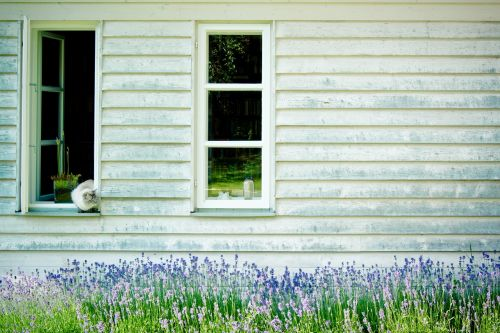 timber façade lattice windows hauswand