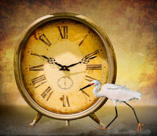 time symbol clock