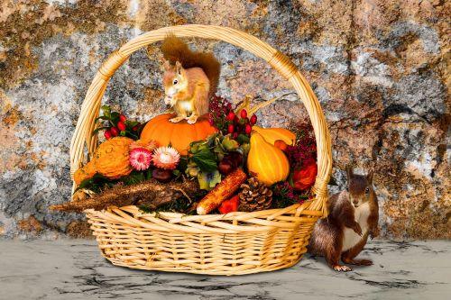 time of year autumn autumn beginning
