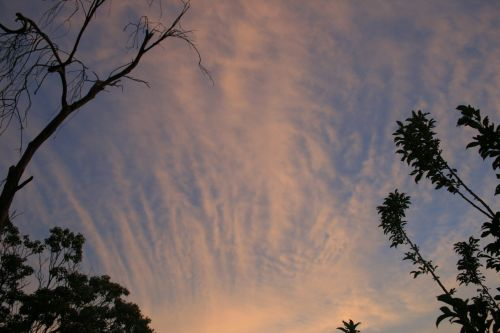 Tinted Fleece Cloud