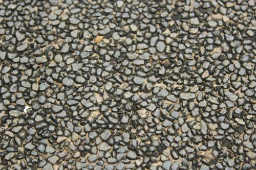 Tiny Pebbles Wall