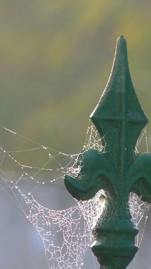 tip arrow web