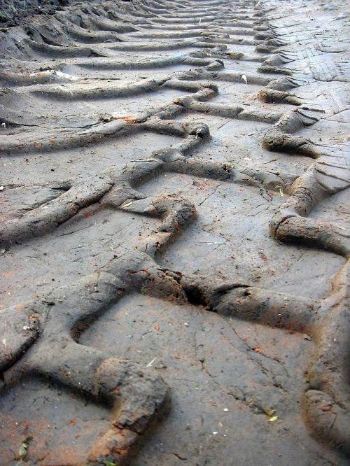 tire tracks path field