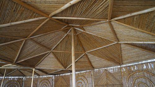 tissue cane bamboo