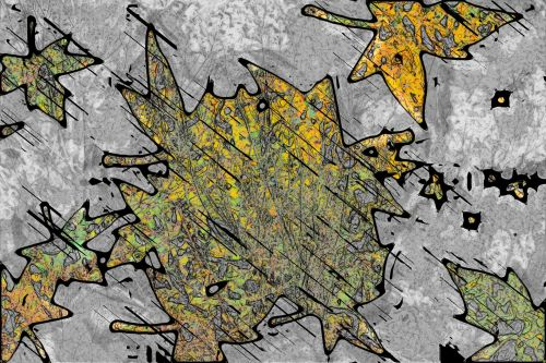 Leaves In Rain, An Art Experiment ...