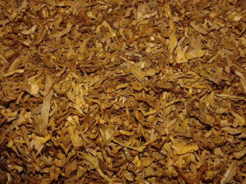 tobacco cigarette cigar