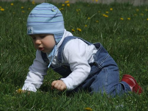 toddler on the grass blue cap