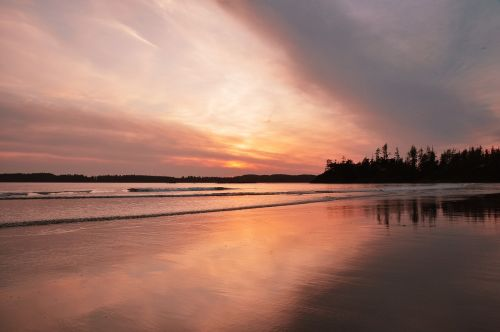 tofino sunset beach