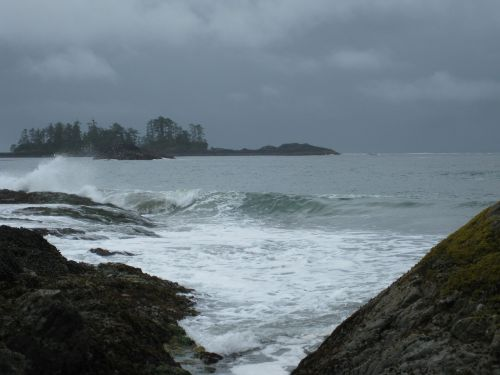 tofino water coast