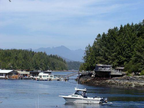 tofino harbor boats