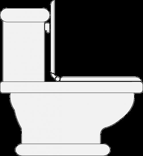 toilet restroom lavatory