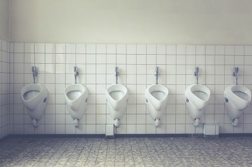 toilet loo wc