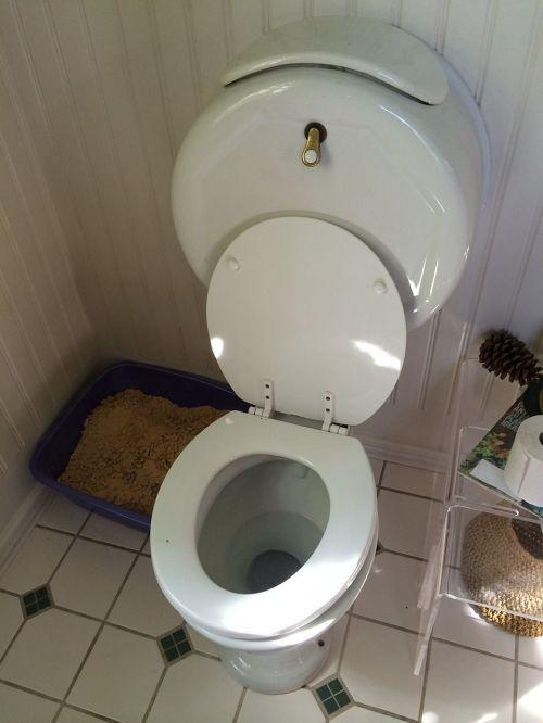 toilet wc bathroom