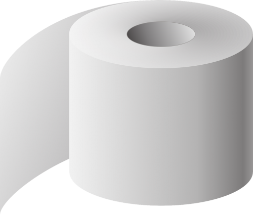 toilet paper toilet the roll of toilet paper