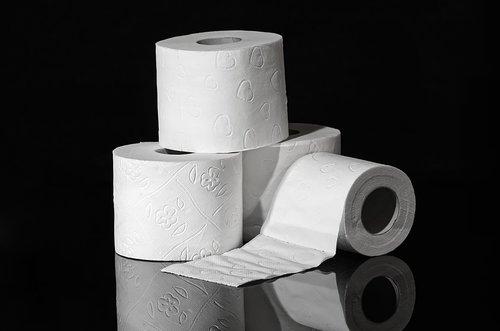 toilet paper  hygiene  role