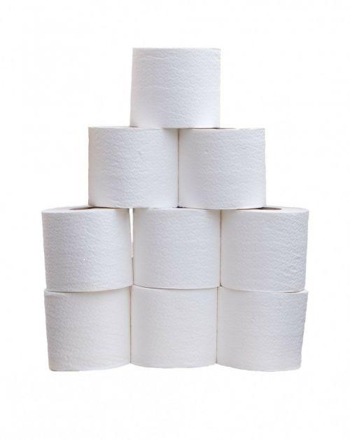 toilet roll toilet rolls toilet tissue