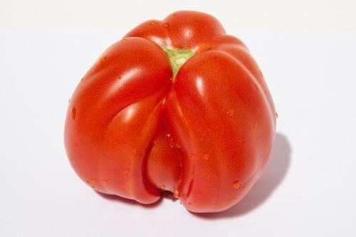 tomato icicle tomato beefsteak tomato