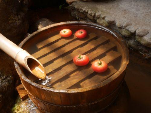tomato tub summer
