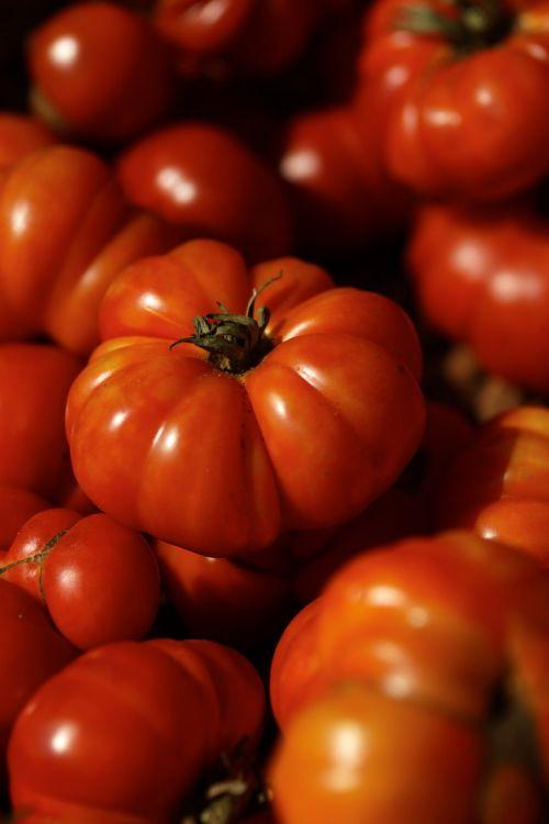 tomato red ripe