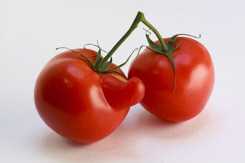 tomato  red  vegetables