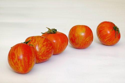 tomato  tigeralla  fruit