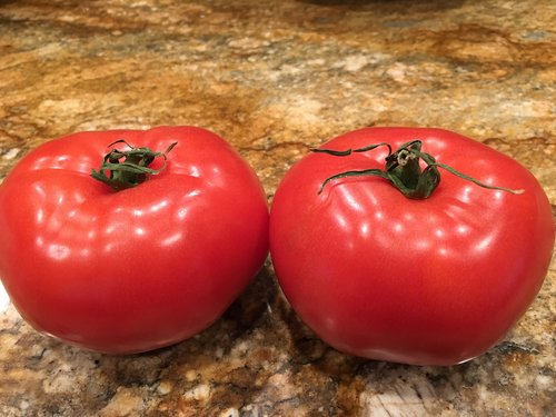 tomato  veggie  fresh