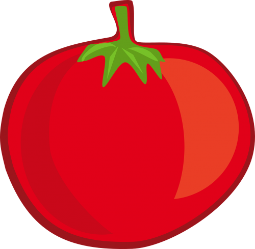 tomato fruit vegetable