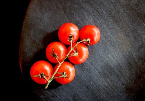 tomato  tomatoes  food
