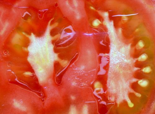 tomato food healthy