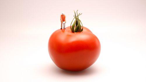 tomato food kitchen