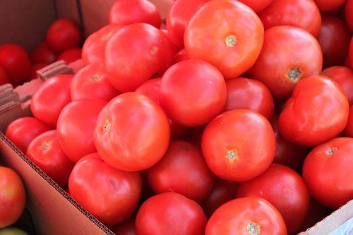 tomato vegetables fruit