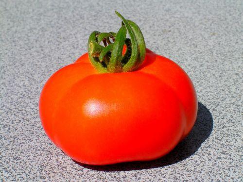 pomidoras, vaisiai, sodas, pinigai, maistas, daržovių, veisimas