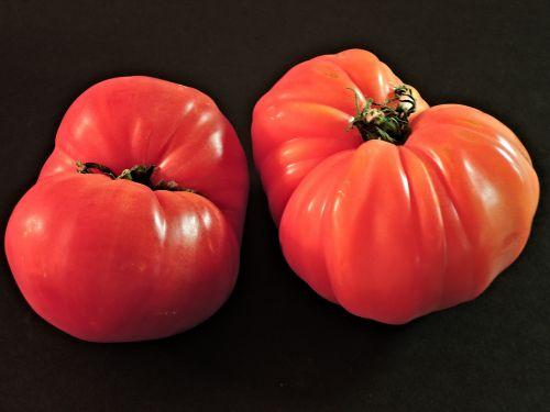 tomatoes zapotec pleated heirloom