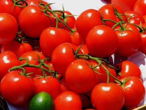 tomatoes,market,vegetables,red,food,delicious,frisch,healthy,vitamins