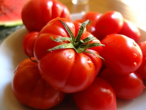 tomatoes frisch italy
